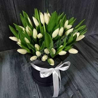 "Bouquet of 51 white tulips in the design box ""Snow Fairy"""