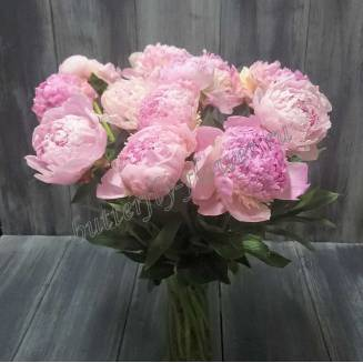 "Bouquet of light-pink peonies ""Sarah Bernhardt"""