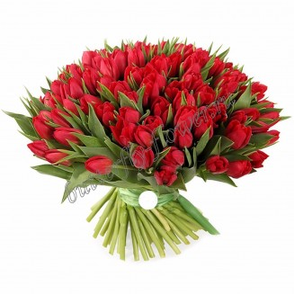 "Bouquet ""101 tulip"""