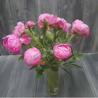"Bouquet of pink peonies ""Sharman"""