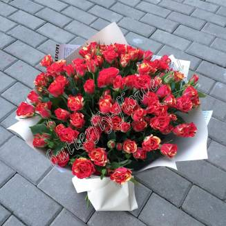 "Bouquet of 25 spray roses ""Fireflash"""