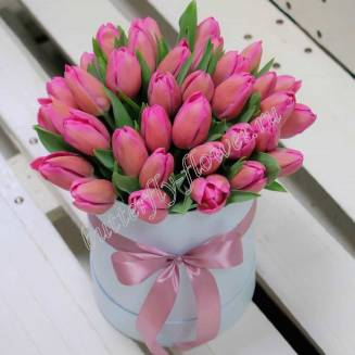 Bouquet of 35 pink tulips in designer box