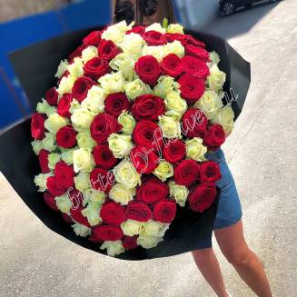 "A large bouquet of 101 red and white Russian roses ""Harmony of color"""