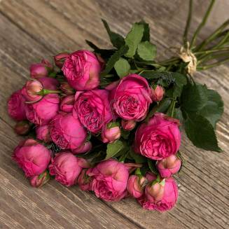 "Bouquet of 11 pink peony roses Pink Piano ""Aroma of love"""