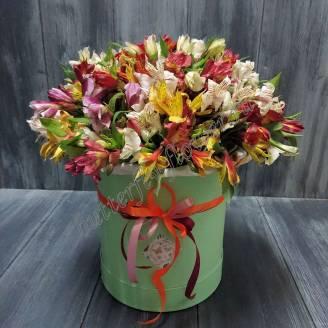 """Bouquet of alstroemeria in design box """"Colibri"""""""