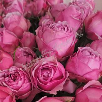 """Bouquet of 11 pink peony roses Pink Piano """"Aroma of love"""""""