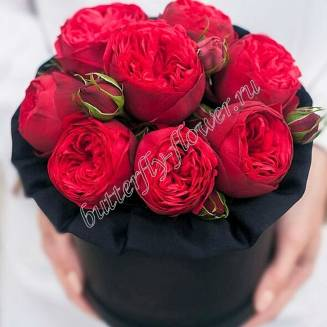 "Bouquet of 9 red peony spray roses Red Piano in the design box ""Red Piano box size-S"""