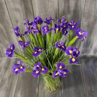 "Bouquet of irises ""Blue magic"""