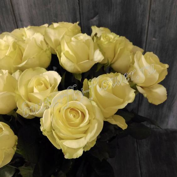 """Bouquet of 25 white roses """"Sincerity"""""""
