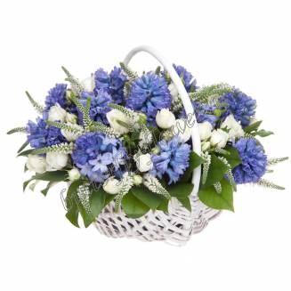 """Basket with hyacinths, veronica and spray roses """"Heavenly Charm"""""""
