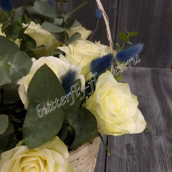 "Basket with 15 white roses and eucalyptus ""Innocence"""