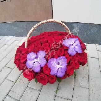 "Basket with 101 red roses and orchid Wanda ""Monarch"""