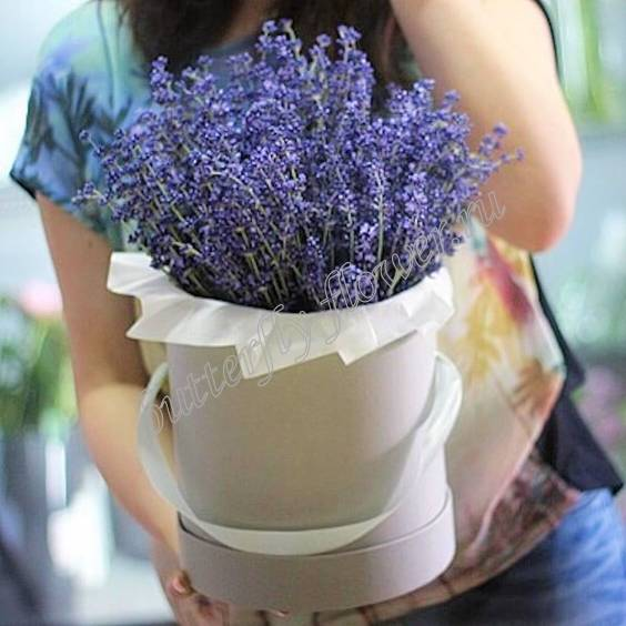 """Bouquet of dried flowers - lavender in a designer box """"Aromatherapy"""""""