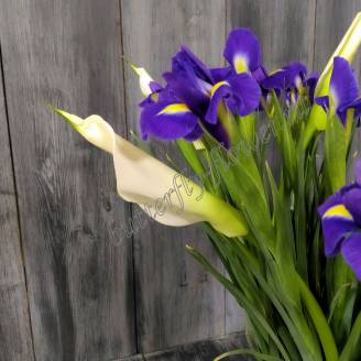 "Bouquet of irises and white callas ""Thaw"""