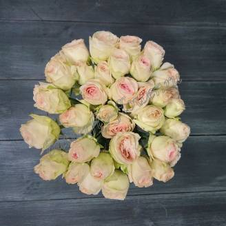 "Spray peony cream rose ""Porcelain Lace"""