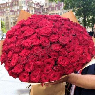 "Large bouquet of 101 Russian red roses 50cm ""Noble luxury"""