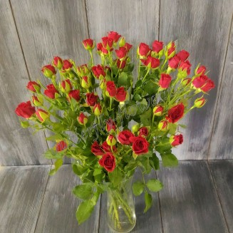 """Bouquet of red spray roses """"Red Spray"""""""